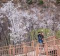 СМИ: Южнокорейцы меняют свои имена ради трудоустройства