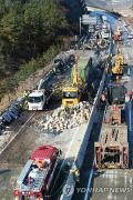 В Южной Корее подвели итоги страшной аварии на автомагистрали